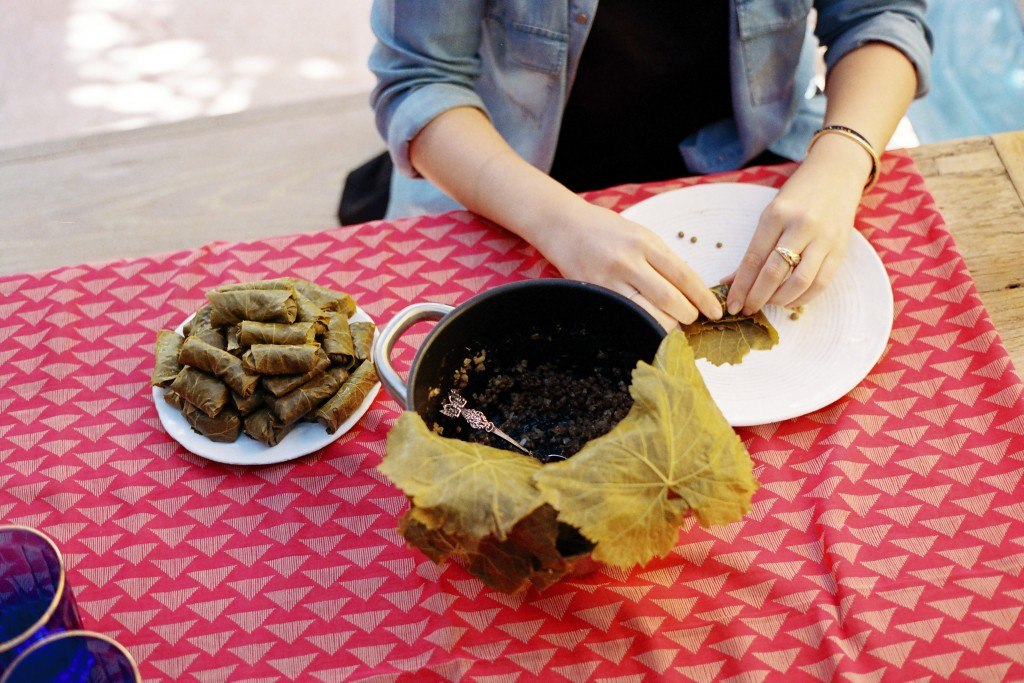 Stuffed grape leaves with lentils, oregano and mint preparation