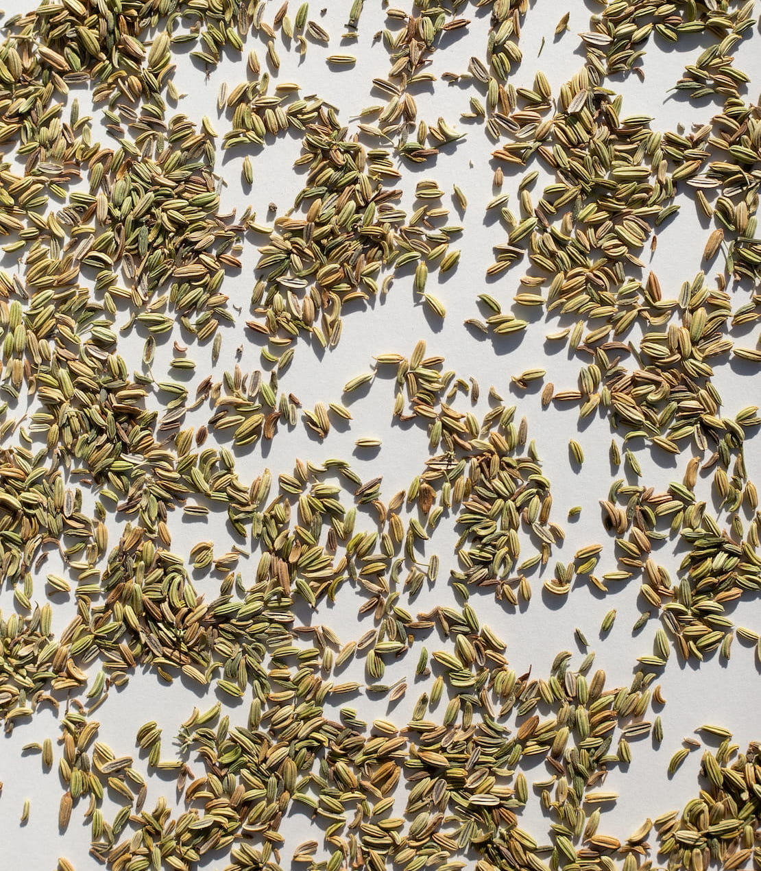 fennel seeds greek